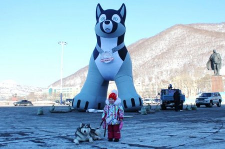 В центре Петропавловска установили 10-метровую фигуру хаски